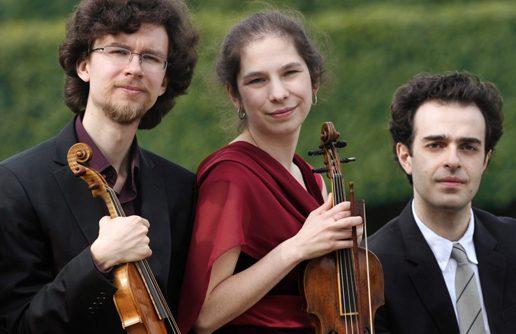 Viva il violino
